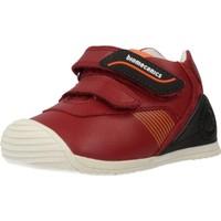 Zapatos Niño Zapatillas bajas Biomecanics 191159 Rojo