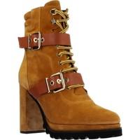 Zapatos Mujer Botines Elvio Zanon EK3601P Marron
