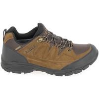 Zapatos Hombre Senderismo Aigle Vedur Low MTD Marron Marrón