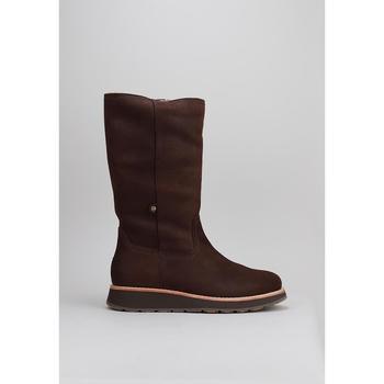 Zapatos Hombre Botas de caña baja Panama Jack Columbia Marrón