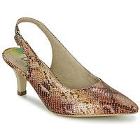 Zapatos Mujer Zapatos de tacón Dorking MOON Marrón