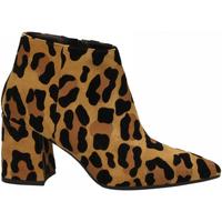 Zapatos Mujer Zapatos de tacón Andrea Zali SAVANA zenzero