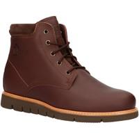 Zapatos Hombre Botas de caña baja Panama Jack TYSON C7 Marr?n