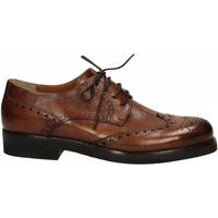 Zapatos Hombre Derbie Edward's PUMA BRIO cuoio
