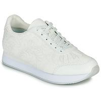 Zapatos Mujer Zapatillas bajas Desigual GALAXY LOTTIE Blanco