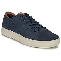 Zapatos Hombre Zapatillas bajas Timberland ADV 2.0 CUPSOLE MODERN OX Azul