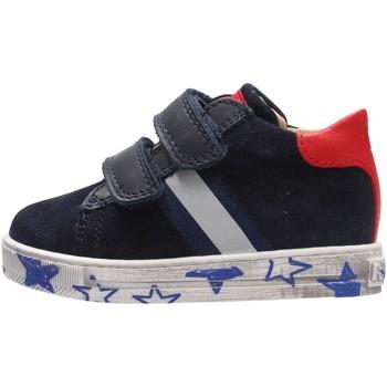 Zapatos Niño Deportivas Moda Falcotto - Sneaker blu LERYN VL BLU