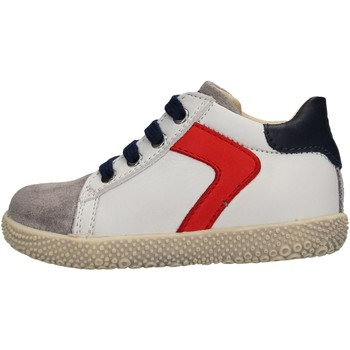 Zapatos Niño Deportivas Moda Falcotto - Polacchino grigio/bco HYSO GRIGIO