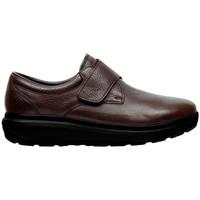 Zapatos Hombre Derbie & Richelieu Joya EDWARD M BROWN