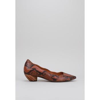 Zapatos Mujer Bailarinas-manoletinas Rt By Roberto Torretta VEGA Marrón