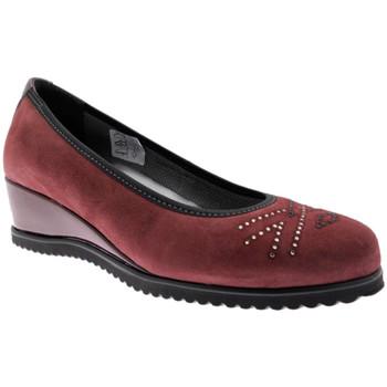 Zapatos Mujer Bailarinas-manoletinas Calzaturificio Loren LOX5905bo nero
