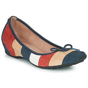 Zapatos Mujer Bailarinas-manoletinas Mam'Zelle FLUTE Azul / Beige / Burdeo