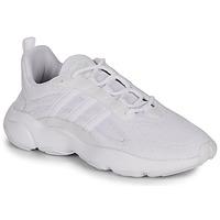 Zapatos Hombre Zapatillas bajas adidas Originals HAIWEE Blanco