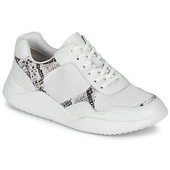 Zapatos Mujer Zapatillas bajas Clarks SIFT LACE Blanco / Pitón
