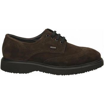 Zapatos Hombre Derbie Frau SUEDEidro pepe