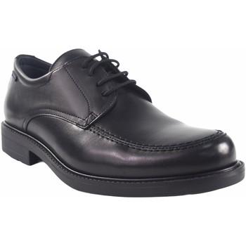 Zapatos Hombre Derbie Baerchi 1802-AE negro