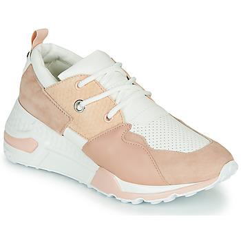 Zapatos Mujer Zapatillas bajas Steve Madden CLIFF Rosa