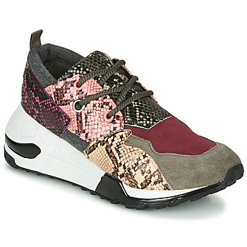 Zapatos Mujer Zapatillas bajas Steve Madden CLIFF Multicolor