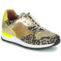 Zapatos Mujer Zapatillas bajas Mjus CAST Kaki / Leopardo