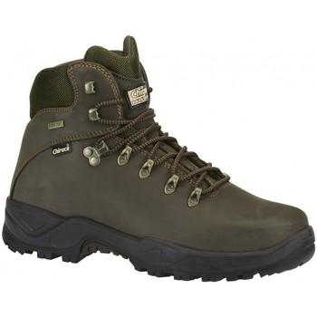 Zapatos Hombre Botas de caña baja Chiruca Botas  Teckel 01 Gore-Tex Verde