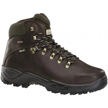 Zapatos Hombre Botas de caña baja Chiruca Botas  Galicia 02 Goretex Marrón