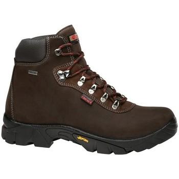 Zapatos Hombre Botas de caña baja Chiruca Botas  Gredos Supra 12 Gore-Tex Marrón
