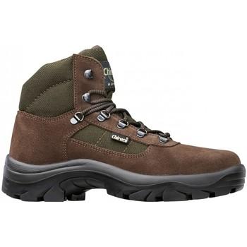 Zapatos Hombre Zapatillas altas Chiruca Botas  Perdiguero 02 Marrón