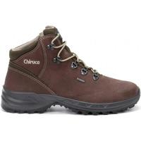 Zapatos Hombre Botas de caña baja Chiruca Botas  Segovia 12 Gore-Tex Marrón