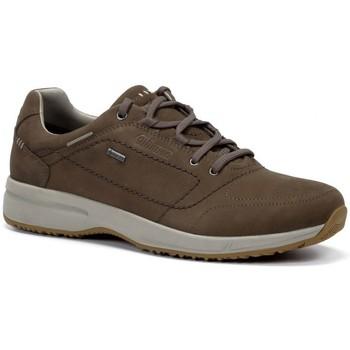Zapatos Hombre Zapatillas bajas Chiruca Zapatos  Toscana 21 Goretex Marrón