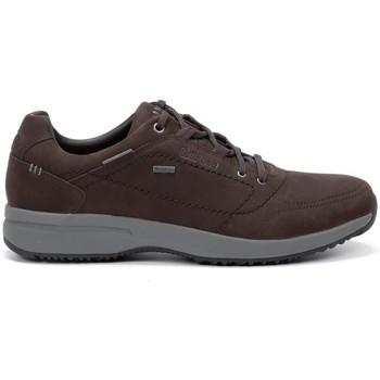 Zapatos Hombre Zapatillas bajas Chiruca Zapatos  Toscana 32 Goretex Marrón