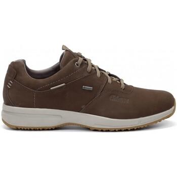 Zapatos Hombre Zapatillas bajas Chiruca Zapatos  Udine 22 Gore-Tex Marrón