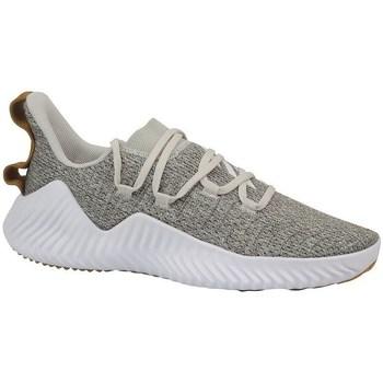 Zapatos Hombre Fitness / Training adidas Originals Alphabounce Trainer Blanco,Beige