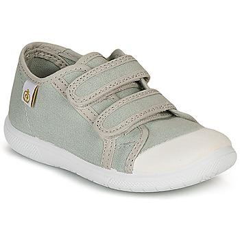 Zapatos Niños Zapatillas bajas Citrouille et Compagnie GLASSIA Gris