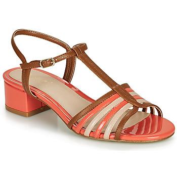 Zapatos Mujer Sandalias André PARISETTE Multicolor