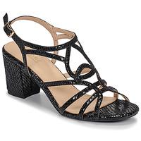 Zapatos Mujer Sandalias André JUDITH Negro