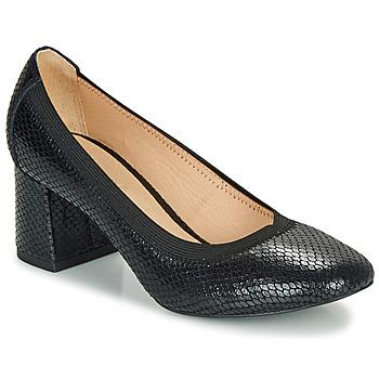 Zapatos Mujer Zapatos de tacón André LAYA Negro / Estampado
