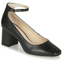 Zapatos Mujer Zapatos de tacón André JASMINE Negro / Estampado