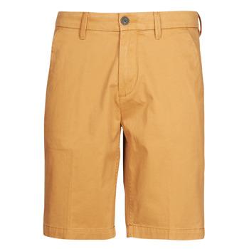textil Hombre Shorts / Bermudas Timberland SQUAM LAKE STRETCH TWILL STRAIGHT CHINO SHORT Beige
