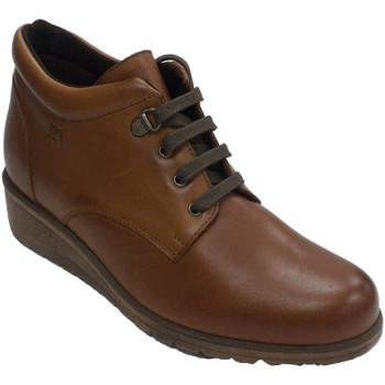 Zapatos Mujer Botas Pepe Menargues Bota cordones mujer marrón