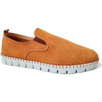 Zapatos Hombre Mocasín Primocx Zapato hombre ancho especial cómodos sup marrón