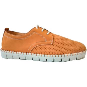 Zapatos Hombre Derbie Primocx Zapato cordones hombre ancho especial có marrón