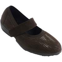 Zapatos Mujer Derbie Doctor Cutillas Zapatillas velcro mujer invierno tipo me marrón