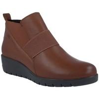 Zapatos Mujer Botines Pepe Menargues 1204 Botines Casual de Mujer marrón