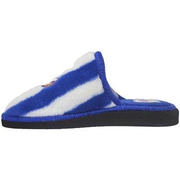 Zapatos Pantuflas Andinas Zapatillas Espanyol Azul
