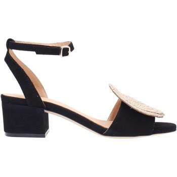 Zapatos Mujer Sandalias PALOMA BARCELÓ NOLANE Multicolore