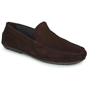 Zapatos Hombre Mocasín André BIOUTY Marrón