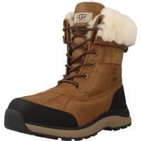 Zapatos Mujer Botas de nieve UGG ADIRONDACK BOOT III Marron