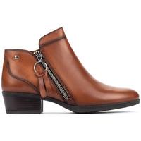 Zapatos Mujer Botines Pikolinos DAROCA W1U CUERO