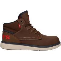 Zapatos Niños Botas de caña baja Levi's VOLY0004S OLYMPUS Marr?n