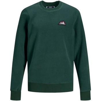 textil Niño sudaderas Jack And Jones Kids JORNORTH SWEAT CREW NECK Verde